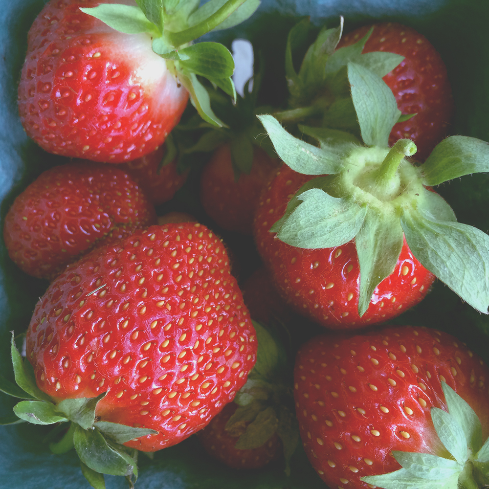 strawberries5