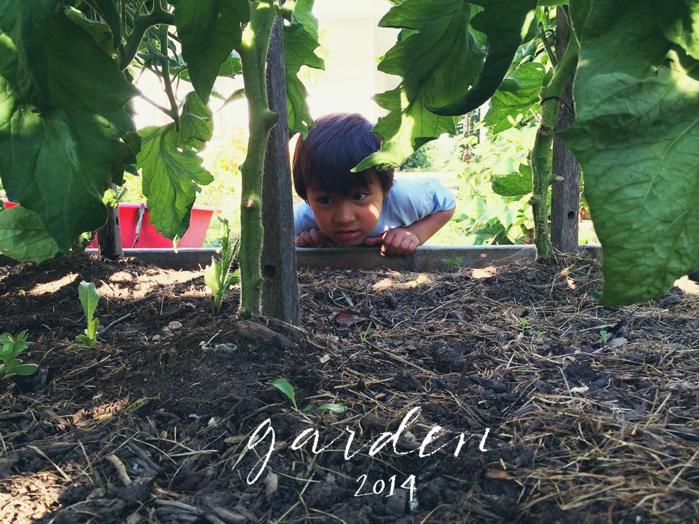crystalmadrilejos_garden2014_17
